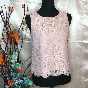 Ann Taylor Loft Petite Light Pink Lace Top